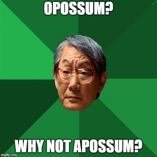 opossum | OPOSSUM? WHY NOT APOSSUM? | image tagged in memes,high expectations asian father | made w/ Imgflip meme maker
