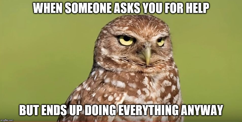 Death Stare Owl | WHEN SOMEONE ASKS YOU FOR HELP BUT ENDS UP DOING EVERYTHING ANYWAY | image tagged in death stare owl | made w/ Imgflip meme maker