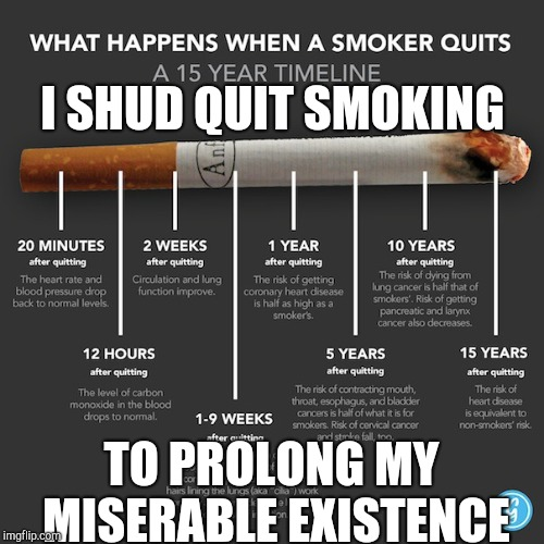 whatever | I SHUD QUIT SMOKING TO PROLONG MY MISERABLE EXISTENCE | image tagged in smoking | made w/ Imgflip meme maker