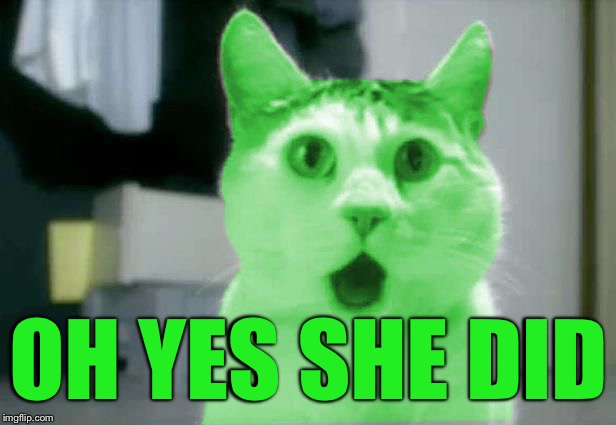 OMG RayCat | OH YES SHE DID | image tagged in omg raycat | made w/ Imgflip meme maker