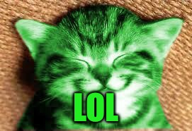 happy RayCat | LOL | image tagged in happy raycat | made w/ Imgflip meme maker