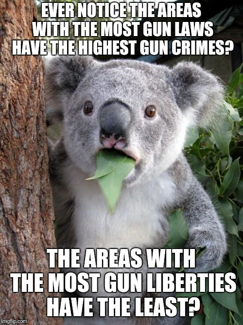 Surprised Koala Meme | EVER NOTICE THE AREAS WITH THE MOST GUN LAWS HAVE THE HIGHEST GUN CRIMES? THE AREAS WITH THE MOST GUN LIBERTIES HAVE THE LEAST? | image tagged in memes,surprised koala | made w/ Imgflip meme maker