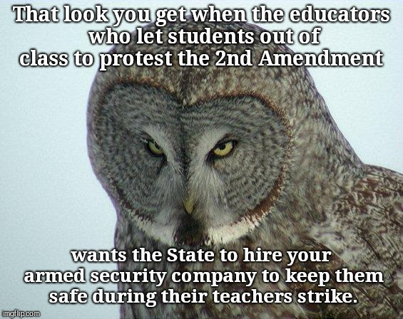 That look you get when the educators who let students out of class to protest the 2nd Amendment wants the State to hire your armed security  | image tagged in that look you get,teachers,hypocrisy | made w/ Imgflip meme maker