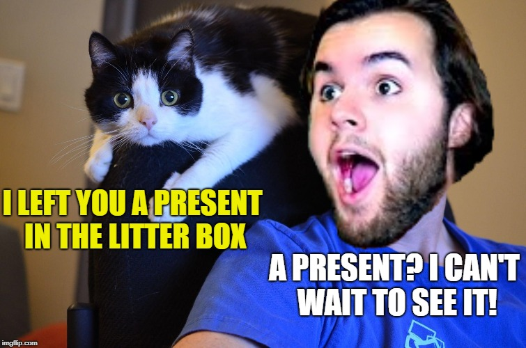 I LEFT YOU A PRESENT IN THE LITTER BOX A PRESENT? I CAN'T WAIT TO SEE IT! | made w/ Imgflip meme maker