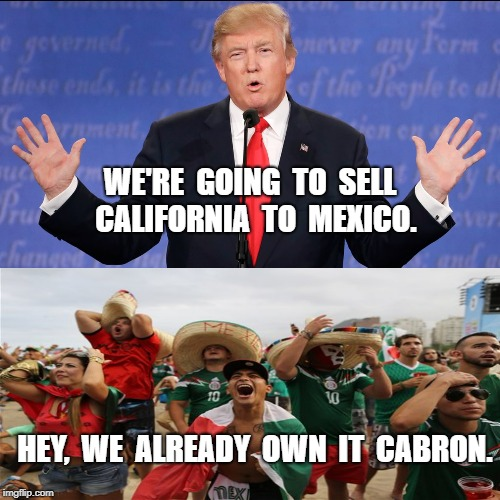 California for sale | WE'RE  GOING  TO  SELL  CALIFORNIA  TO  MEXICO. HEY,  WE  ALREADY  OWN  IT  CABRON. | image tagged in mexico,owns meme | made w/ Imgflip meme maker