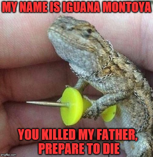 I do not mean to pry, but you don't by any chance happen to have six fingers on your right hand?  | MY NAME IS IGUANA MONTOYA YOU KILLED MY FATHER, PREPARE TO DIE | image tagged in memes,proncess bride,inigo montoya,prepare to die,iguana | made w/ Imgflip meme maker