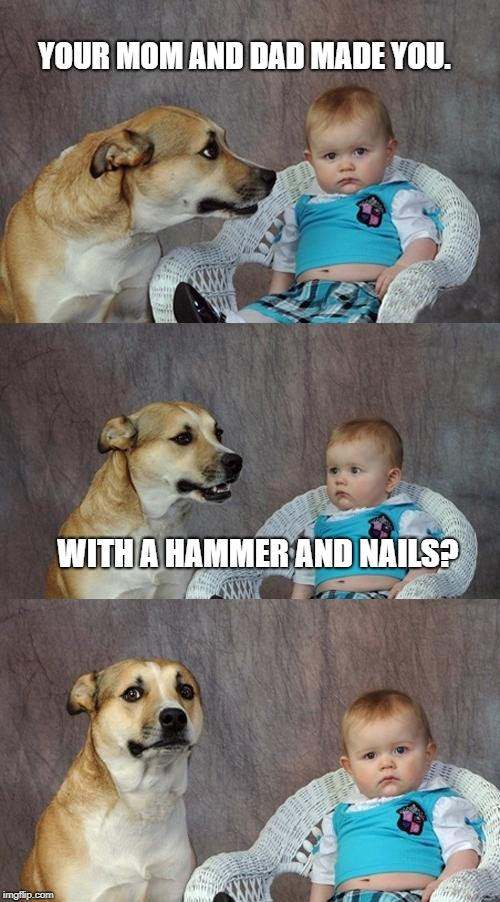 Dad Joke Dog Meme | YOUR MOM AND DAD MADE YOU. WITH A HAMMER AND NAILS? | image tagged in memes,dad joke dog | made w/ Imgflip meme maker