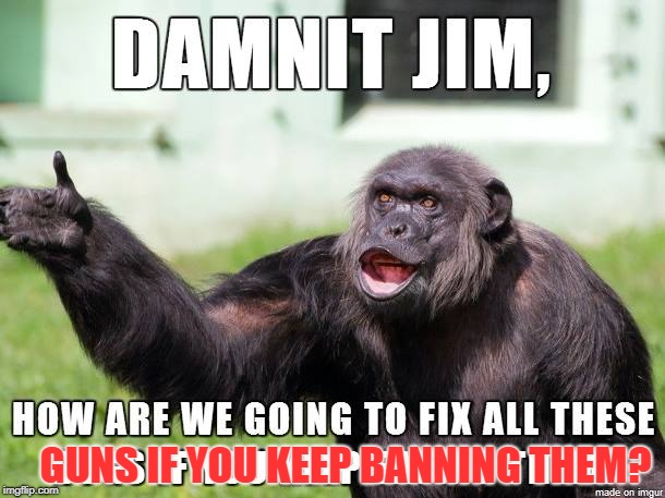Dammit Jim | GUNS IF YOU KEEP BANNING THEM? | image tagged in dammit jim | made w/ Imgflip meme maker
