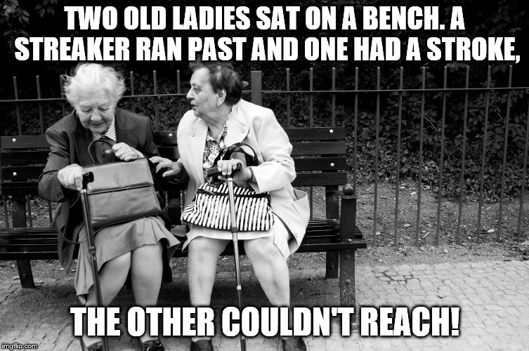 Old dears  | TWO OLD LADIES SAT ON A BENCH. A STREAKER RAN PAST AND ONE HAD A STROKE, THE OTHER COULDN'T REACH! | image tagged in sick,jokes,imgflip,funny memes | made w/ Imgflip meme maker