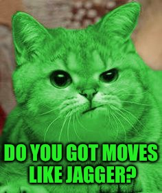 RayCat Annoyed | DO YOU GOT MOVES LIKE JAGGER? | image tagged in raycat annoyed | made w/ Imgflip meme maker