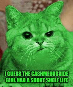 RayCat Annoyed | I GUESS THE CASHMEOUSSIDE GIRL HAD A SHORT SHELF LIFE | image tagged in raycat annoyed | made w/ Imgflip meme maker