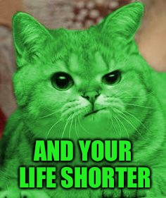 RayCat Annoyed | AND YOUR LIFE SHORTER | image tagged in raycat annoyed | made w/ Imgflip meme maker