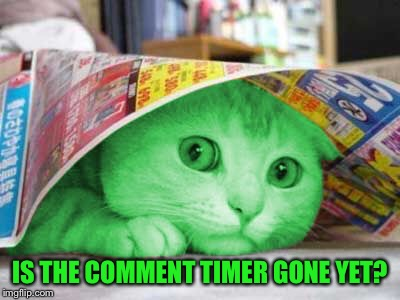 RayCat Scared | IS THE COMMENT TIMER GONE YET? | image tagged in raycat scared | made w/ Imgflip meme maker