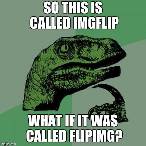 Philosoraptor Meme | SO THIS IS CALLED IMGFLIP WHAT IF IT WAS CALLED FLIPIMG? | image tagged in memes,philosoraptor | made w/ Imgflip meme maker
