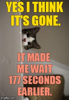 YES I THINK IT'S GONE. IT MADE ME WAIT 177 SECONDS EARLIER. | made w/ Imgflip meme maker