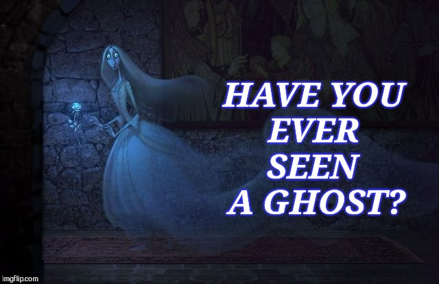 Have You Ever Seen a Ghost? | HAVE YOU EVER SEEN A GHOST? | image tagged in ghost,spirit,spooky,eternity,witchcraft,connection | made w/ Imgflip meme maker