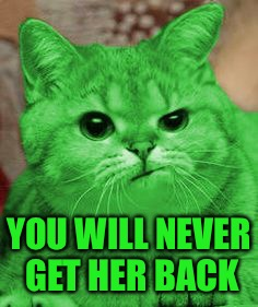 RayCat Annoyed | YOU WILL NEVER GET HER BACK | image tagged in raycat annoyed | made w/ Imgflip meme maker