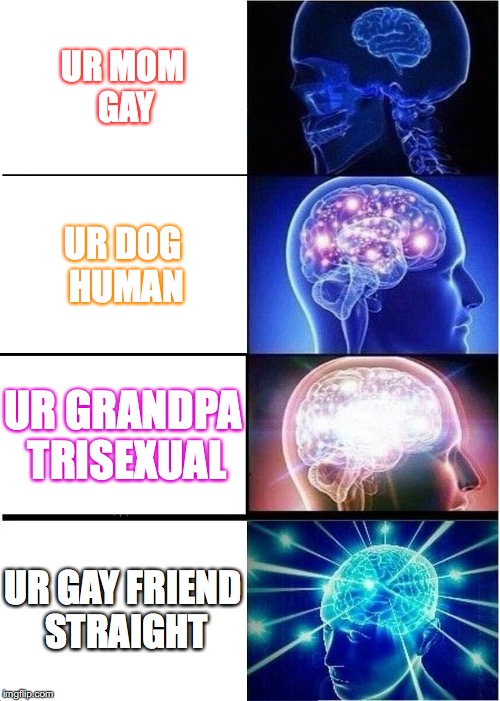 Expanding Brain Meme | UR MOM GAY UR DOG HUMAN UR GRANDPA TRISEXUAL UR GAY FRIEND STRAIGHT | image tagged in memes,expanding brain | made w/ Imgflip meme maker