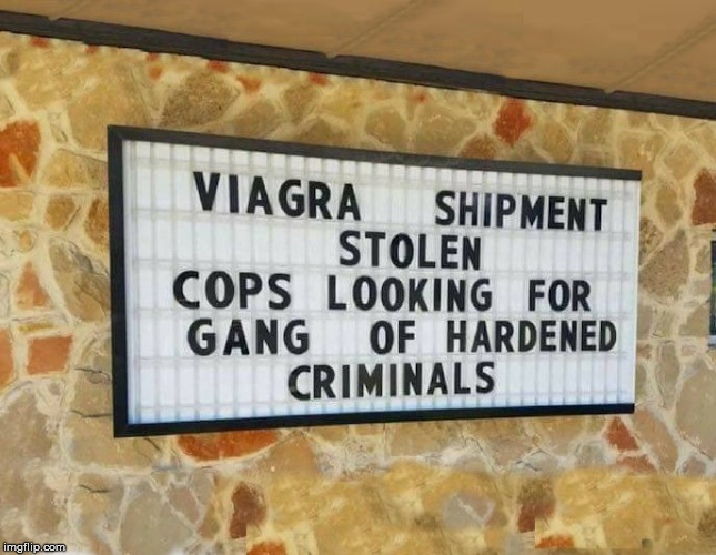 Would you put police women on the case? | image tagged in police joke,humor memes,funny sign,cops,criminals,pun | made w/ Imgflip meme maker