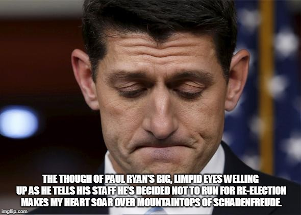 Sad Paul Ryan | THE THOUGH OF PAUL RYAN'S BIG, LIMPID EYES WELLING UP AS HE TELLS HIS STAFF HE'S DECIDED NOT TO RUN FOR RE-ELECTION MAKES MY HEART SOAR OVER | image tagged in sad paul ryan | made w/ Imgflip meme maker
