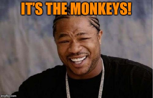 Yo Dawg Heard You Meme | IT'S THE MONKEYS! | image tagged in memes,yo dawg heard you | made w/ Imgflip meme maker