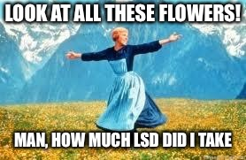 Don't do drugs | LOOK AT ALL THESE FLOWERS! MAN, HOW MUCH LSD DID I TAKE | image tagged in memes,look at all these | made w/ Imgflip meme maker