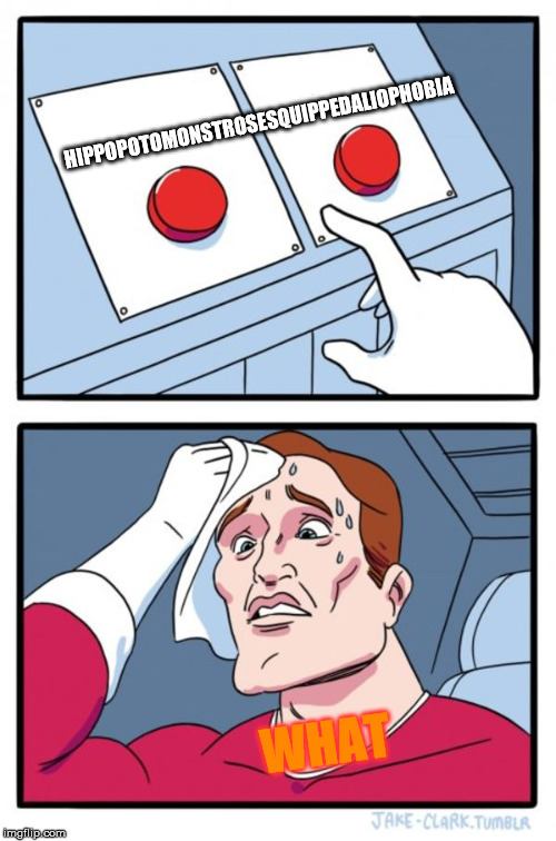 Two Buttons Meme | HIPPOPOTOMONSTROSESQUIPPEDALIOPHOBIA WHAT | image tagged in memes,two buttons | made w/ Imgflip meme maker