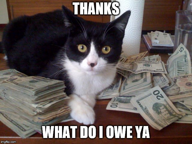 THANKS WHAT DO I OWE YA | made w/ Imgflip meme maker