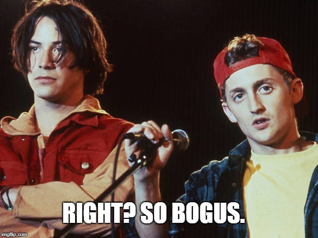 Bill and Ted | RIGHT? SO BOGUS. | image tagged in bill and ted | made w/ Imgflip meme maker