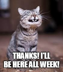 smiling cat | THANKS! I'LL BE HERE ALL WEEK! | image tagged in smiling cat | made w/ Imgflip meme maker