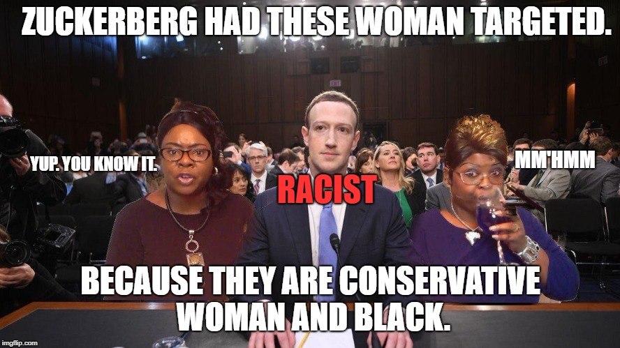 What's good for the goose is good for the ganderberg. | ZUCKERBERG HAD THESE WOMAN TARGETED. BECAUSE THEY ARE CONSERVATIVE WOMAN AND BLACK. RACIST MM'HMM YUP. YOU KNOW IT. | image tagged in mark zuckerberg,facebook,conservative,woman | made w/ Imgflip meme maker