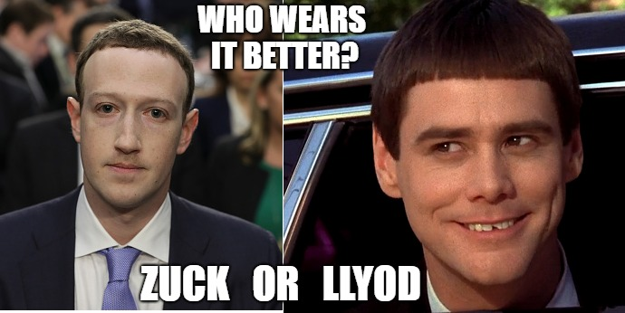 Zuck or Lloyd  | WHO WEARS IT BETTER? ZUCK   OR   LLYOD | image tagged in facebook,mark zuckerberg,lloyd,dumb and dumber | made w/ Imgflip meme maker