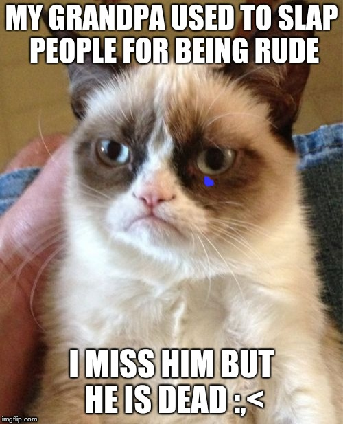 Grumpy Cat Meme | MY GRANDPA USED TO SLAP PEOPLE FOR BEING RUDE I MISS HIM BUT HE IS DEAD :,< | image tagged in memes,grumpy cat | made w/ Imgflip meme maker