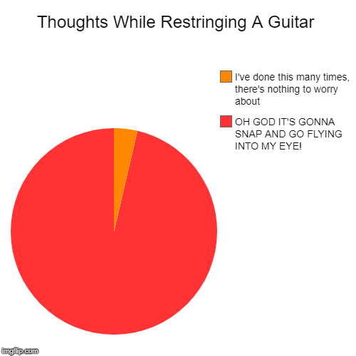 Only Guitar Players Will Understand This | Thoughts While Restringing A Guitar | OH GOD IT'S GONNA SNAP AND GO FLYING INTO MY EYE!, I've done this many times, there's nothing to worry | image tagged in pie charts,memes,doctordoomsday180,guitar,guitars,guitar string | made w/ Imgflip pie chart maker
