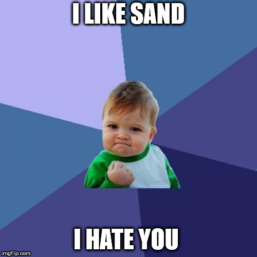 Success Kid Meme | I LIKE SAND I HATE YOU | image tagged in memes,success kid | made w/ Imgflip meme maker