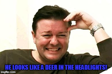 laughing | HE LOOKS LIKE A DEER IN THE HEADLIGHTS! | image tagged in laughing | made w/ Imgflip meme maker