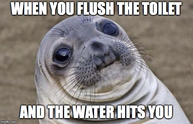 Awkward Moment Sealion Meme | WHEN YOU FLUSH THE TOILET AND THE WATER HITS YOU | image tagged in memes,awkward moment sealion | made w/ Imgflip meme maker