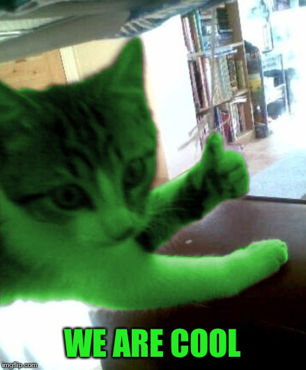 thumbs up RayCat | WE ARE COOL | image tagged in thumbs up raycat | made w/ Imgflip meme maker