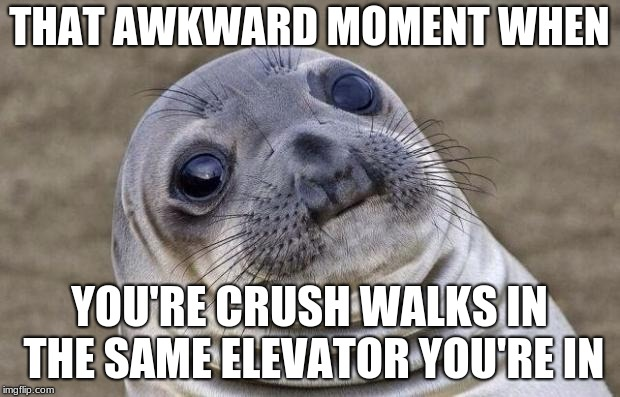Awkward Moment Sealion Meme | THAT AWKWARD MOMENT WHEN YOU'RE CRUSH WALKS IN THE SAME ELEVATOR YOU'RE IN | image tagged in memes,awkward moment sealion | made w/ Imgflip meme maker