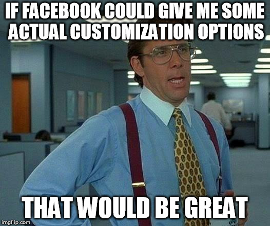 That Would Be Great Meme | IF FACEBOOK COULD GIVE ME SOME ACTUAL CUSTOMIZATION OPTIONS THAT WOULD BE GREAT | image tagged in memes,that would be great | made w/ Imgflip meme maker