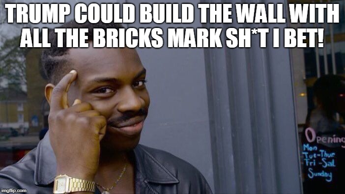 Roll Safe Think About It Meme | TRUMP COULD BUILD THE WALL WITH ALL THE BRICKS MARK SH*T I BET! | image tagged in memes,roll safe think about it | made w/ Imgflip meme maker