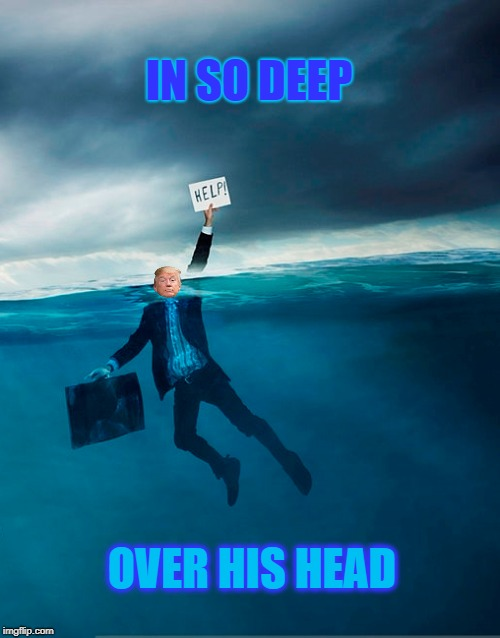 The pResident is Drowning | IN SO DEEP OVER HIS HEAD | image tagged in trump,syrian refugees,michael cohen,scott pruitt,the wall,foreign wars | made w/ Imgflip meme maker