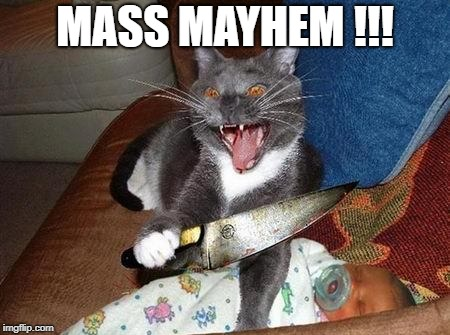 MASS MAYHEM !!! | made w/ Imgflip meme maker