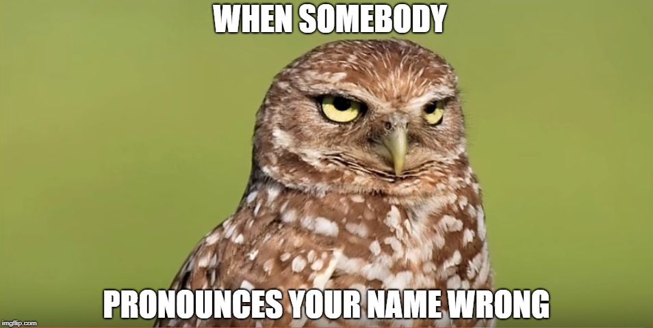 Death Stare Owl | WHEN SOMEBODY PRONOUNCES YOUR NAME WRONG | image tagged in death stare owl,memes,funny,doctordoomsday180,pronunciation,name | made w/ Imgflip meme maker