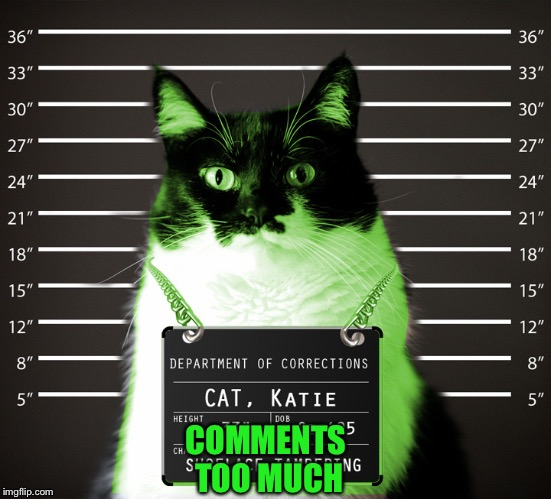 RayCat Incarcerated | COMMENTS TOO MUCH | image tagged in raycat incarcerated | made w/ Imgflip meme maker
