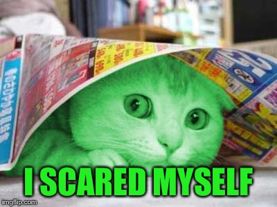 RayCat Scared | I SCARED MYSELF | image tagged in raycat scared | made w/ Imgflip meme maker
