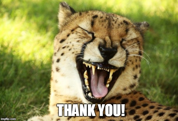 cheetah | THANK YOU! | image tagged in cheetah | made w/ Imgflip meme maker