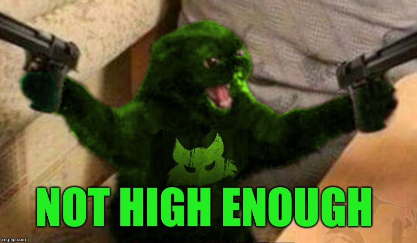 RayCat Angry | NOT HIGH ENOUGH | image tagged in raycat angry | made w/ Imgflip meme maker