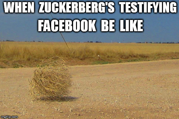 When Zuckerber's Testifying | WHEN  ZUCKERBERG'S  TESTIFYING FACEBOOK  BE  LIKE | image tagged in mark zuckerberg | made w/ Imgflip meme maker