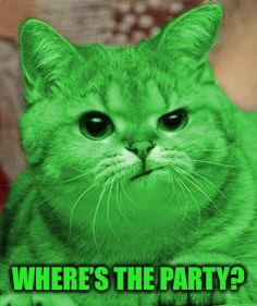 RayCat Annoyed | WHERE'S THE PARTY? | image tagged in raycat annoyed | made w/ Imgflip meme maker